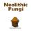 Neolithic Fungi